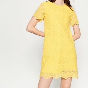 Zara Yellow Lace Shift Dress